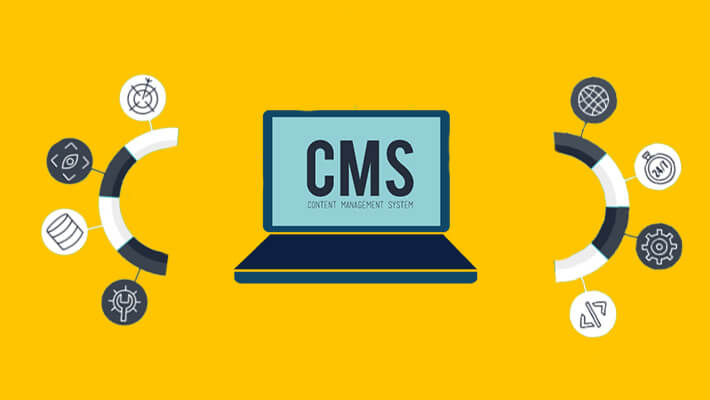 What is the Best Programming Language to Create a CMS