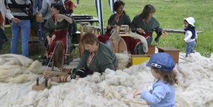 Sheep Shearing Festival 2019