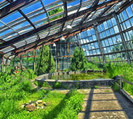 Botanical Garden of Yerevan