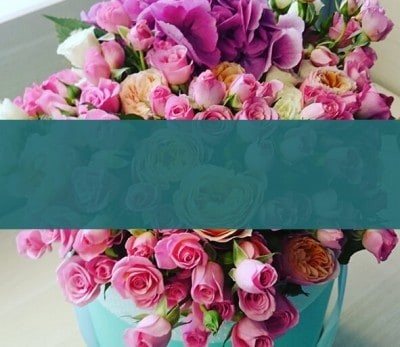 armenian-native-flowers