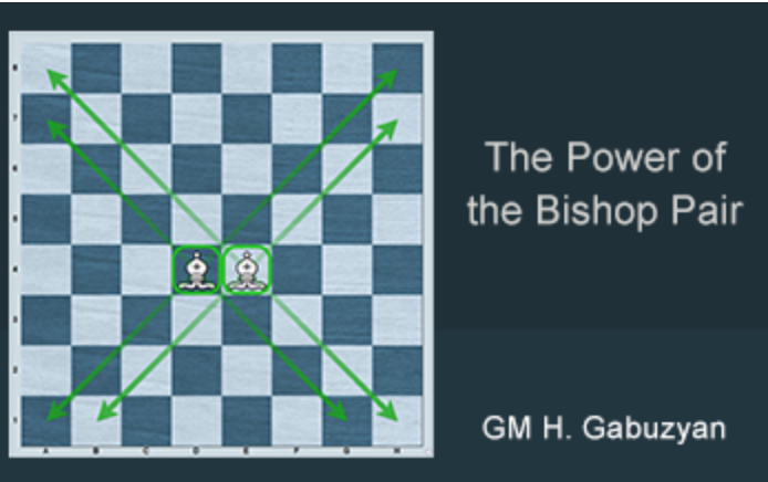 The Power of the Bishop Pair