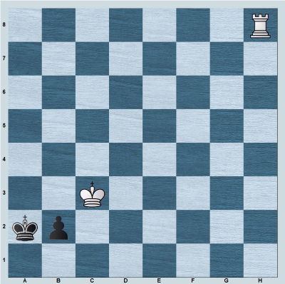 Another Rook vs b-pawn position