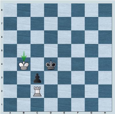 Position after 7.Kb4!